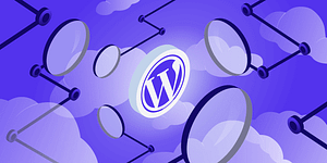 What is WordPress? A Guide for Beginners